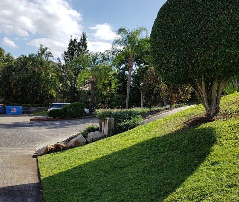 4 Winter Lawn Care Tips