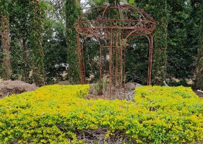 blue-tongue-pm-resididential-gardens