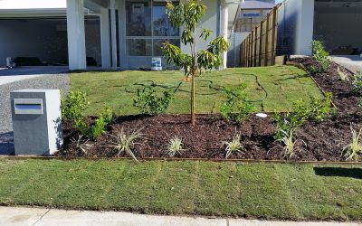 5 Tips for Winter Lawn Care and Landscape Maintenance