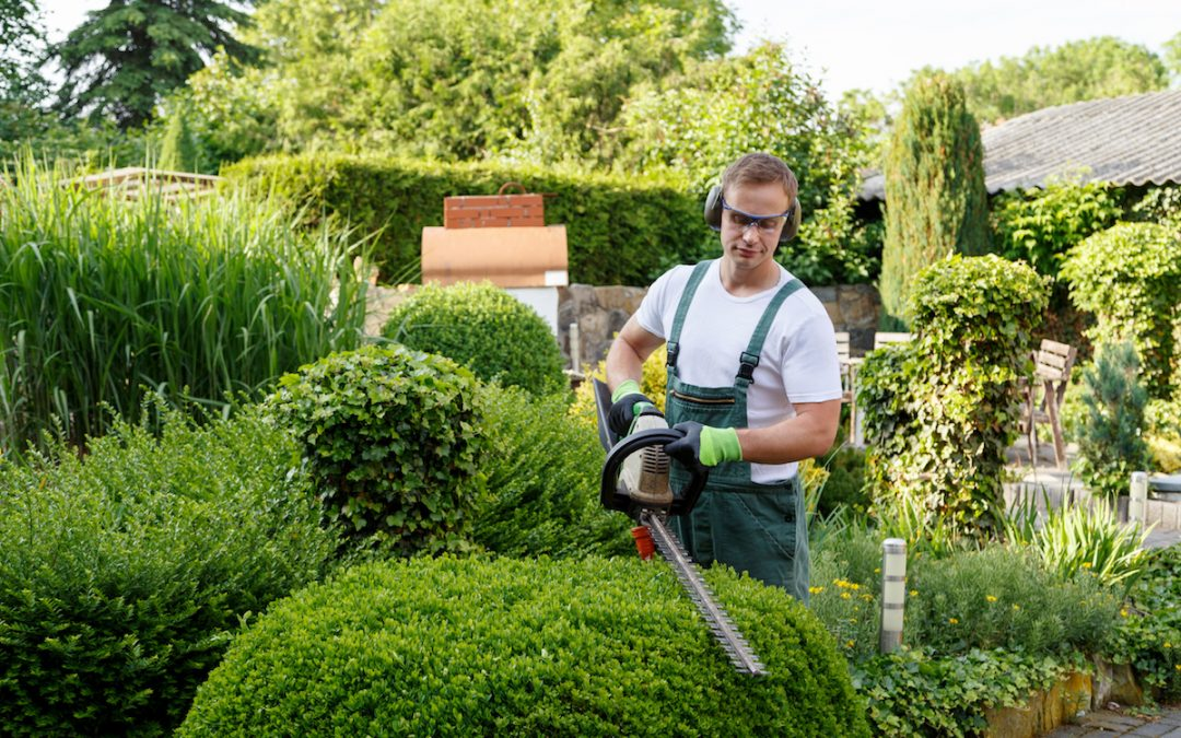 4 Advantages of Landscape Contractors