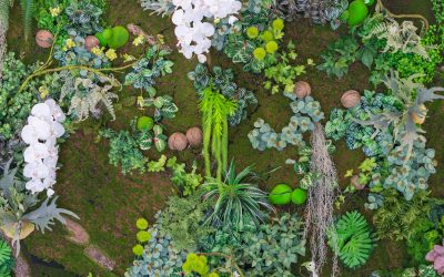 The Rising Significance of Multifunctional Landscapes