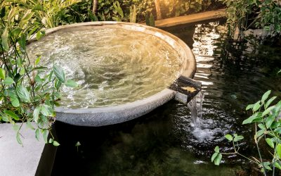 Include these popular water features in your landscaping