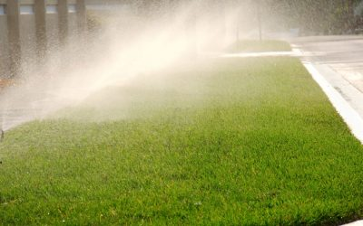 Irrigation Tips for Your Commercial Property