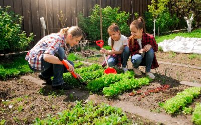 Tips for Creating Landscaping to Suit the Seasons